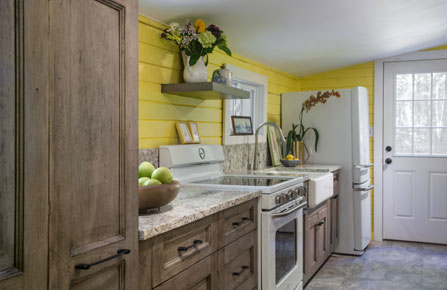 Teknika kitchen remodel - Colorful Cabin